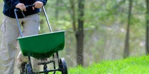 Top 5 Best Natural Concentrate Fertilizers